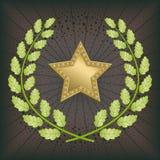 Stjärnautmärkelse Arkivfoto