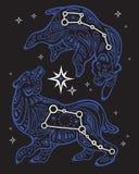 Stjärnklar himmel för tryck Stor och liten skopa Royaltyfri Bild