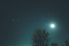Stjärnklar himmel för vinter i byn royaltyfri foto