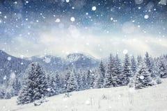 Stjärnklar himmel i snöig natt för vinter Carpathians Ukraina, Europa Arkivfoto