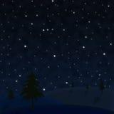Stjärnklar himmel med träd Royaltyfri Foto