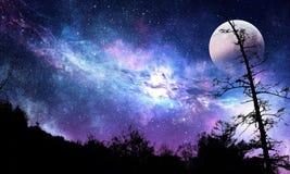 Stjärnklar himmel och måne Blandat massmedia Arkivbilder