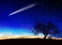 Stjärnklar natt arkivbilder