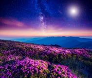 Stjärnklar natt i berg Arkivfoto