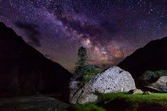 Stjärnklar natt i bergen Ensam tree på en vagga Royaltyfri Fotografi
