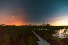 Stjärnklar natt på ett träsk Arkivbilder