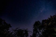 stjärnor Arkivbild