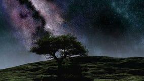 Stjärnor för himmel för natt för Tid schackningsperiod purpurfärgade över kullen med trädet royaltyfri illustrationer
