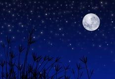 stjärnor för moonnattsky Fotografering för Bildbyråer