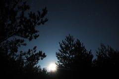 Stjärnor för natthimmel, måneljus och Pleiades observation royaltyfria foton