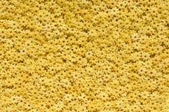 Stjärnor formade pastabakgrund Fotografering för Bildbyråer