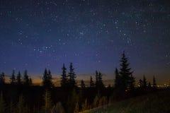 Stjärnor i de Carpathian bergen Arkivfoto
