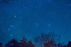 Stjärnor i nattskyen Arkivbilder