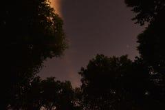 Stjärnor konstellationer, Polstjärnan, polstjärnan Pleiades sju systrar Arkivbild