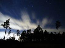 Stjärnor och cluds över nattskog Arkivbilder