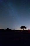 Stjärnor på Hastings punkt Royaltyfria Bilder