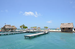 Stjärnafiskö, Belize Arkivfoto