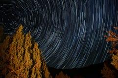 Stjärnan skuggar runt om polstjärnan med ett träd som är upplyst vid en lägereld Arkivfoton