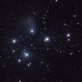 Stjärnor i Pleiadesen (M45) Arkivbild