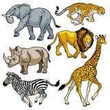 Ställ in med vilda djur av Afrika Arkivbild
