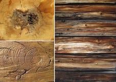 ställ in texturer wood Royaltyfri Bild