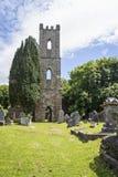 StMary-` s Kirche in Inishannon lizenzfreies stockfoto
