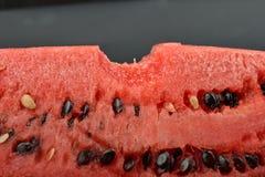 Stäng sig upp av den nya vattenmelon med gruppen av frö med en tuggaiso Arkivbild