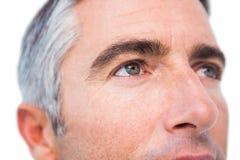 Stäng sig upp av en man med grått hår Royaltyfri Bild