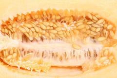 Stäng sig upp av en melon på insidan Royaltyfri Bild