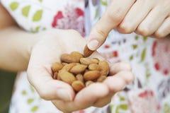 Stäng sig upp av kvinnan som äter handfullmandelar Fotografering för Bildbyråer