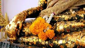 Stäng sig upp handen på den buddha statyn med den täckte bladguldet Handbuddha för selektiv fokus staty stock video