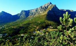 Stołowa góra jak widzieć od lwa ` s głowy Zdjęcie Royalty Free