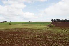 Stołowa przylądek ziemia uprawna Zdjęcie Stock