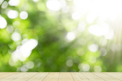 Stołowego wierzchołka pokaz na zielonym naturalnym tle fotografia royalty free