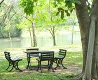 Stoły, krzesła i drzewa, Obraz Royalty Free