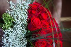 Sto czerwonych róż na purpurowym tle Bukiet kwiatu bukiet sto czerwonych róż Duży bukiet sto duży Fotografia Stock