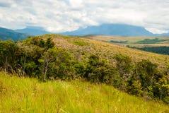 Stołowe góry w Granie Sabana, Wenezuela Obrazy Stock