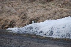 Stoat в пальто зимы Стоковые Фотографии RF