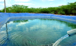 Stoccaggio dell'acqua di agricoltura Fotografia Stock Libera da Diritti