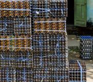 Stoccaggio dell'uovo Fotografia Stock