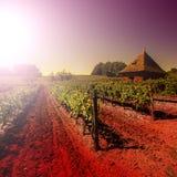 Stoccaggio dello strumento di giardino in Francia Fotografia Stock