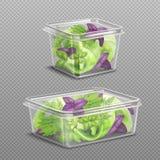 Stoccaggio di plastica dell'insalata fresca trasparente royalty illustrazione gratis