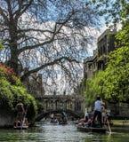 STOCHERN IN CAMBRIDGE Lizenzfreie Stockbilder