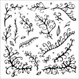 Stock  abstract leaf elements set. summer design elements Stock Images