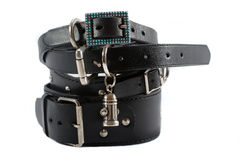 Stock of black dog collars Royalty Free Stock Image