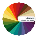 Stock  color guide. Seasonal color analysis palette for autumn type. Type of female appearance Royalty Free Stock Photo