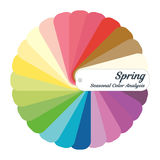 Stock  color guide. Seasonal color analysis palette for spring type. Type of female appearance. For your design Stock Image