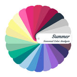 Stock color guide. Seasonal color analysis palette for summer type. Type of female appearance. For your design stock illustration