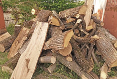 Stock of dry wood Stock Images