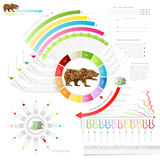 stock exchange infographic with bear.business template Royalty Free Stock Image